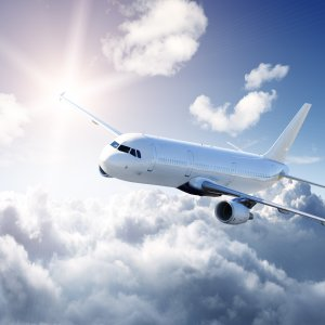 Fly og himmel